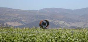 little-oak-vineyard-frost-protection-fan