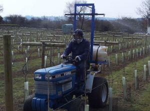 little-oak-vineyard-tractor